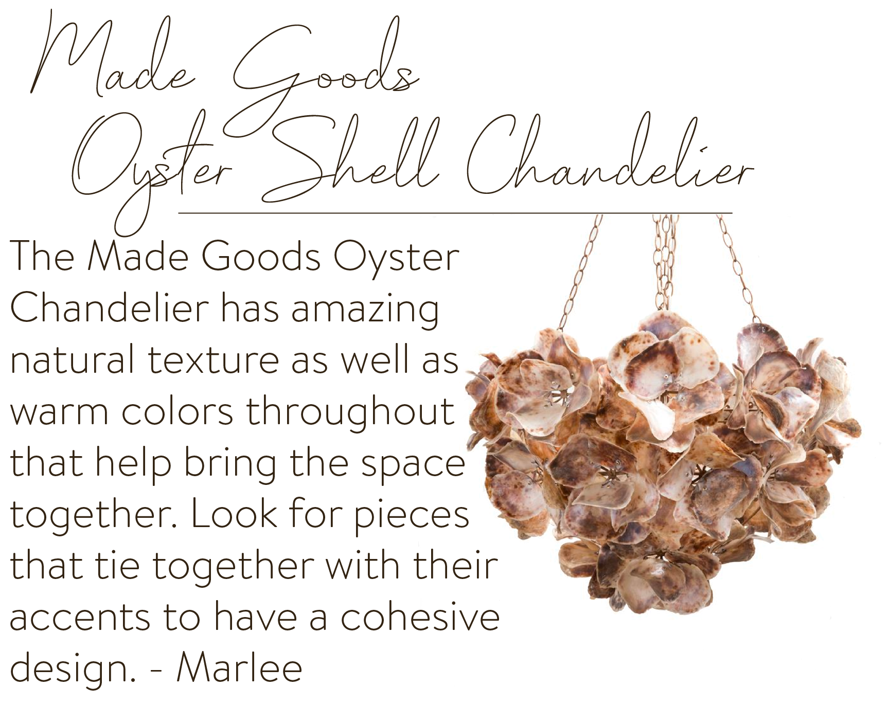 Made Goods Oyster Shell Chandelier